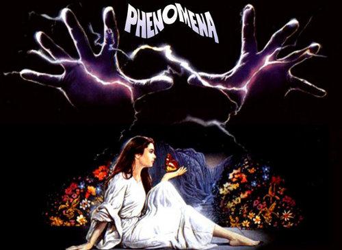 phenomena-01