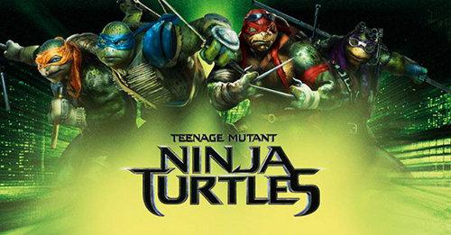 turtles-2014-01